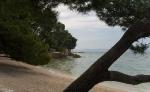 beach-Punta-Rata2.jpg