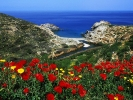Ikaria, Aegean Islands, Greece.jpg