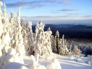 Taganai_Winter_Ural_Russia.jpg